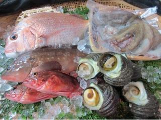 新鮮!季節の海鮮まるごと盛合せ|商品画像