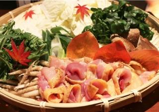 鹿児島 薩摩地鶏のおいしい選べるお鍋セット(2~3人前)|商品画像