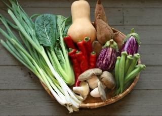季節のお野菜ギフトセット(小) 【1回お届け】|商品画像