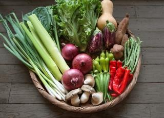 季節のお野菜ギフトセット(大) 【1回お届け】|商品画像