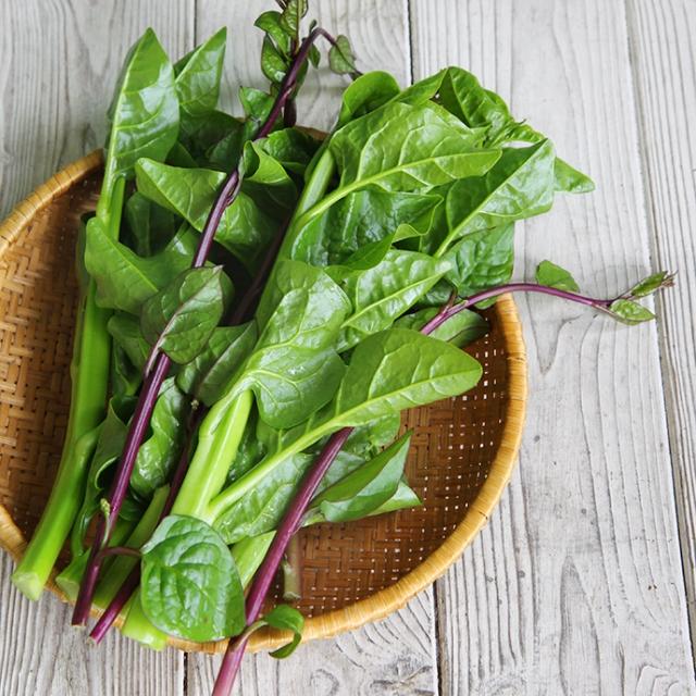季節のお野菜ギフトセット(小) 【毎月1回お届け(6ヶ月間)】|商品写真