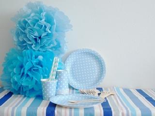 ブルーパーティ A ベーシックセット|商品画像