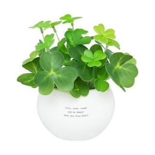 キレイな空気とラッキーを贈ろう!CT触媒グリーン クローバー 名入れ|商品画像