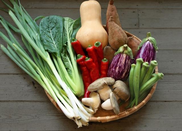 野菜セットのギフト