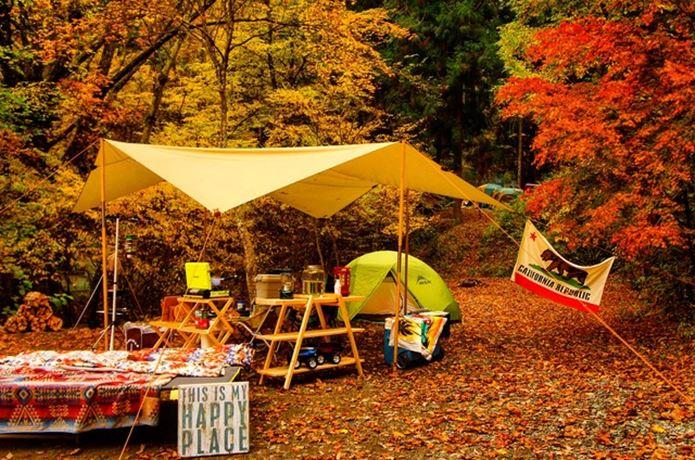 紅葉の綺麗なキャンプ場